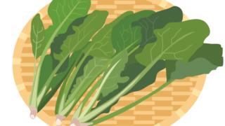 ほうれん草:栄養成分を紹介!豊富なビタミンCでガン予防!美肌効果も。